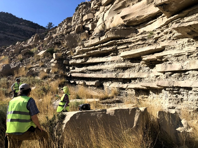 Above: 2019 Sloss Awardee and former SGD Chair Margie Chan discussing the pro-delta deposits of the Panther Tongue Sandstone near Helper, UT with a group of StraboStrat beta testers. Hopefully, field outings like this can be back on our calendars soon!